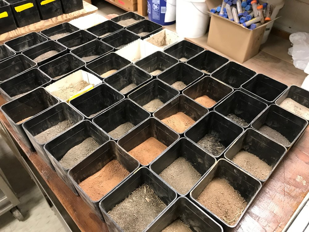 A group of soils is dried, ground and prepared for further testing at the LSU AgCenter Soil Testing and Plant Analysis Lab.Photo by Kyle Peveto/LSU AgCenter