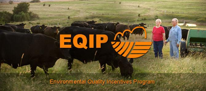 EQIP Logo.jpg