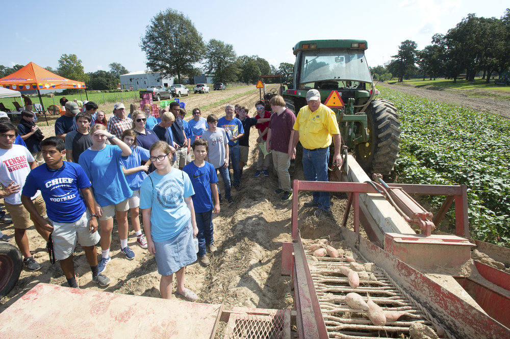 Bill McLemore, LSU AgCenter research associate, right in yellow shirt, talks about sweet potato harvesting equipment at the northeast youth field day at the AgCenter Sweet Potato Research Station in Chase, Louisiana, on Sept. 27, 2017. Photo by Olivia McClure/LSU AgCenter