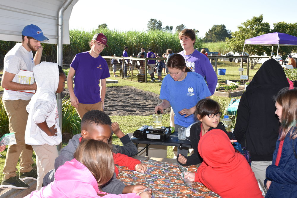 Caroline Scorsone, a student volunteer, shows third- and fourth-grade students how to make lip balm from soybean oil at AgDay in St. James Parish on Oct. 18. Photo by Johnny Morgan/LSU AgCenter