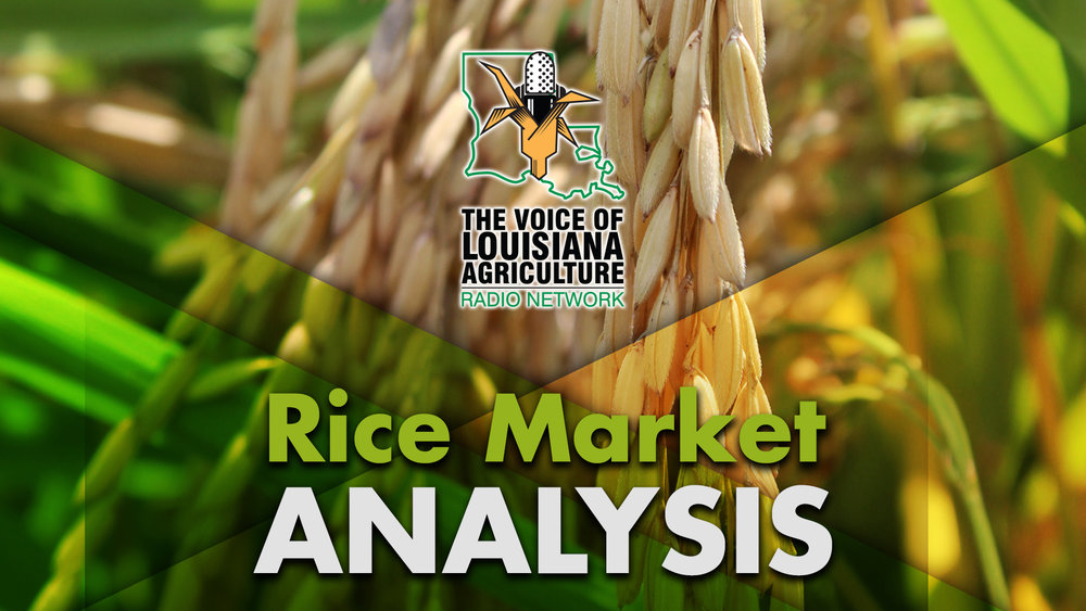 The Closing Market Report on the Voice of Louisiana Agriculture Radio Network, featuring rice market commentary from Mark Tall, rice marketing specialist with the Louisiana Farm Bureau Marketing Association.
