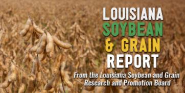 The Louisiana Soybean & Grain Report