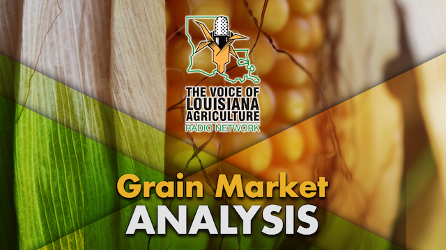 The Closing Market Report on the Voice of Louisiana Agriculture Radio Network, featuring grain market commentary from Jack Scoville with the Price Futures Group in Chicago.