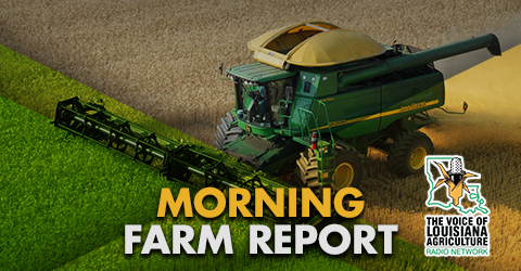 Carey Martin takes a look at the latest news in Louisiana agriculture, yesterday's grain market analysis and prices, and the latest livestock markets on The Voice of Louisiana Agriculture Radio Network.