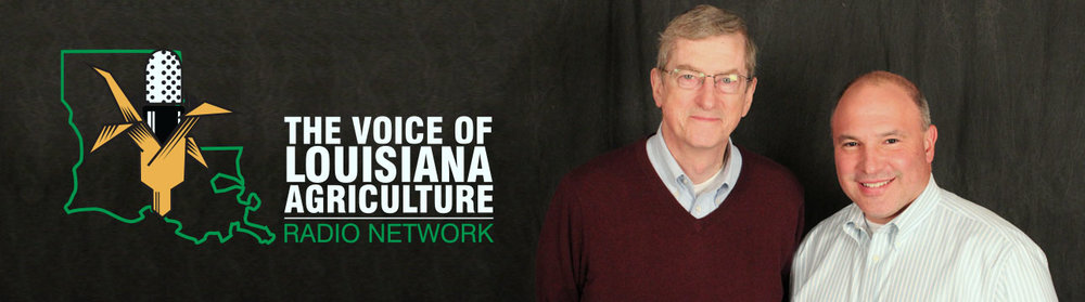 "don molino and I split the broadcasting duties each day on the voice of louisiana agriculture radio network.  we also produce a daily e-newsletter called ""the Daily Voice,"" and run its companion facebook and twitter accounts. don has become one of the best friends i could ever ask for."