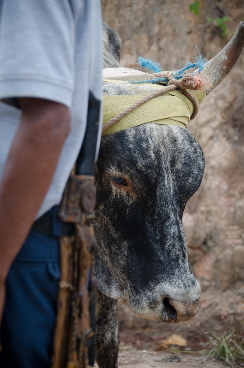 HondurasMissions.KevinLambPhotography-5705.jpg