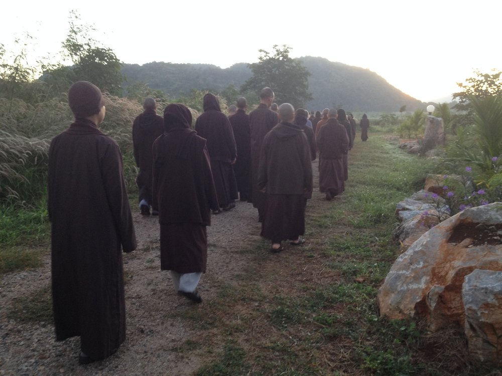 Walking meditation with the monks and nuns at Thai Plum Village, November 2016.