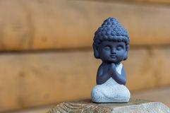 Litle Buddha