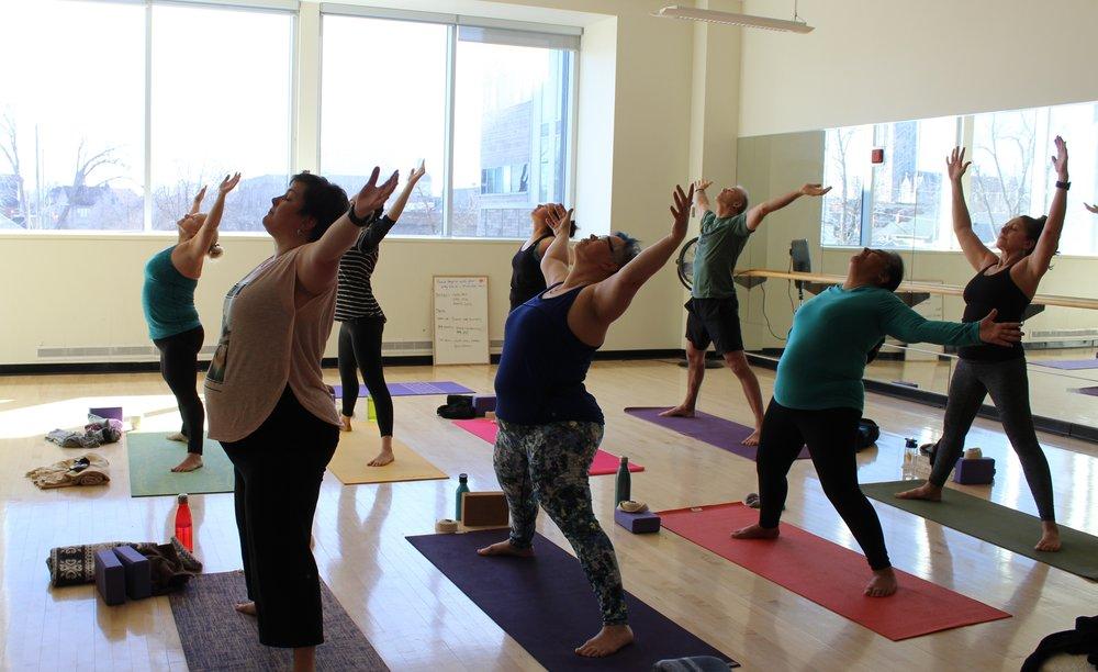 200-Hour Yoga & Mindfulness Teacher Training in Kingston, Ontario -
