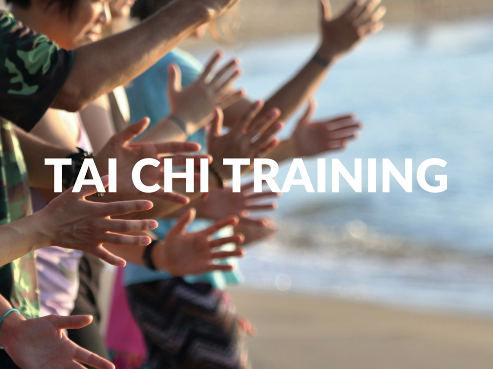 saigon-om-tai-chi-qi-gong-training-kingston-ontario-canada