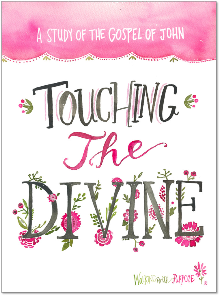 - Touching the Divine is a 21 week course that integrates the Gospel of John with the teaching of the Roman Catholic Church to help us know Christ in a deeper, more intimate way.The course is designed for both interactive personal study and group discussion.
