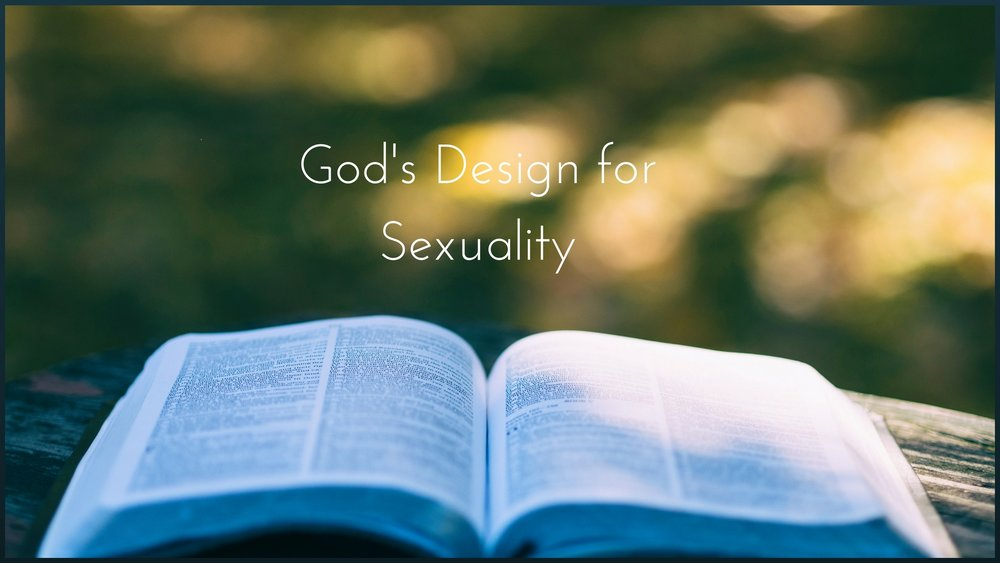 God's Design for Sexuality.jpg