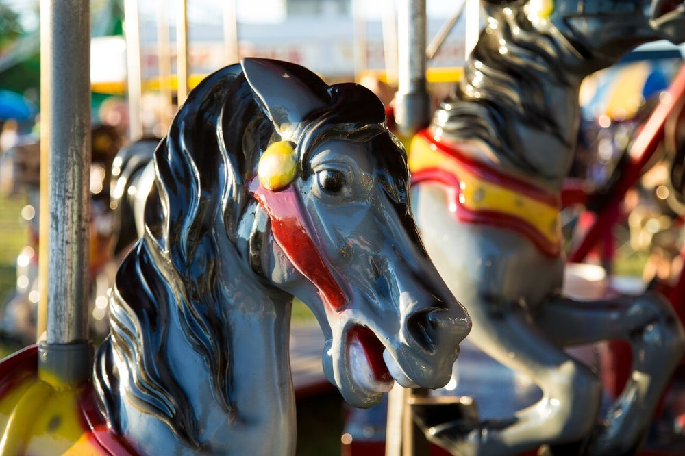 close up carousel horse.jpg