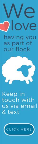 Website-banner-vertical-light-blue.png