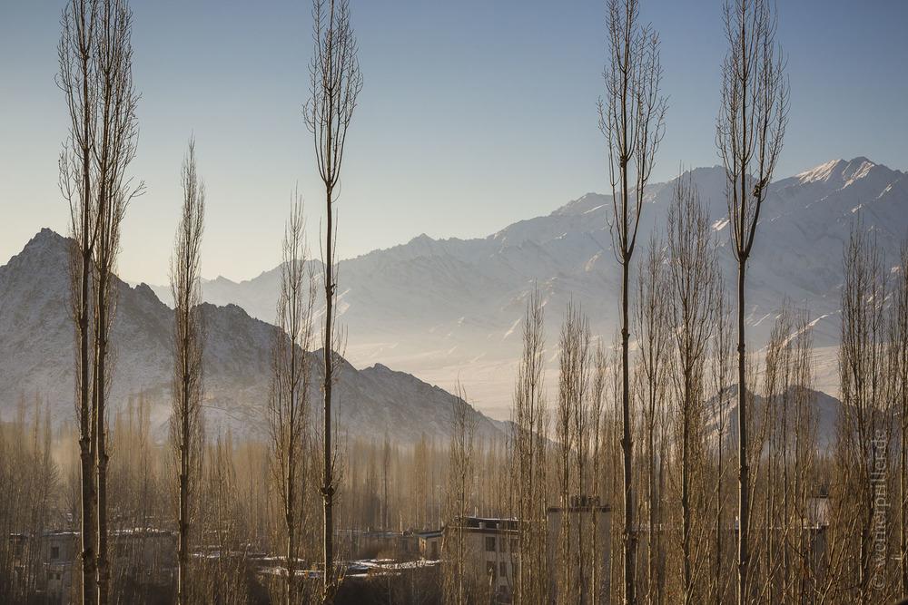 Ladakh-9.jpg