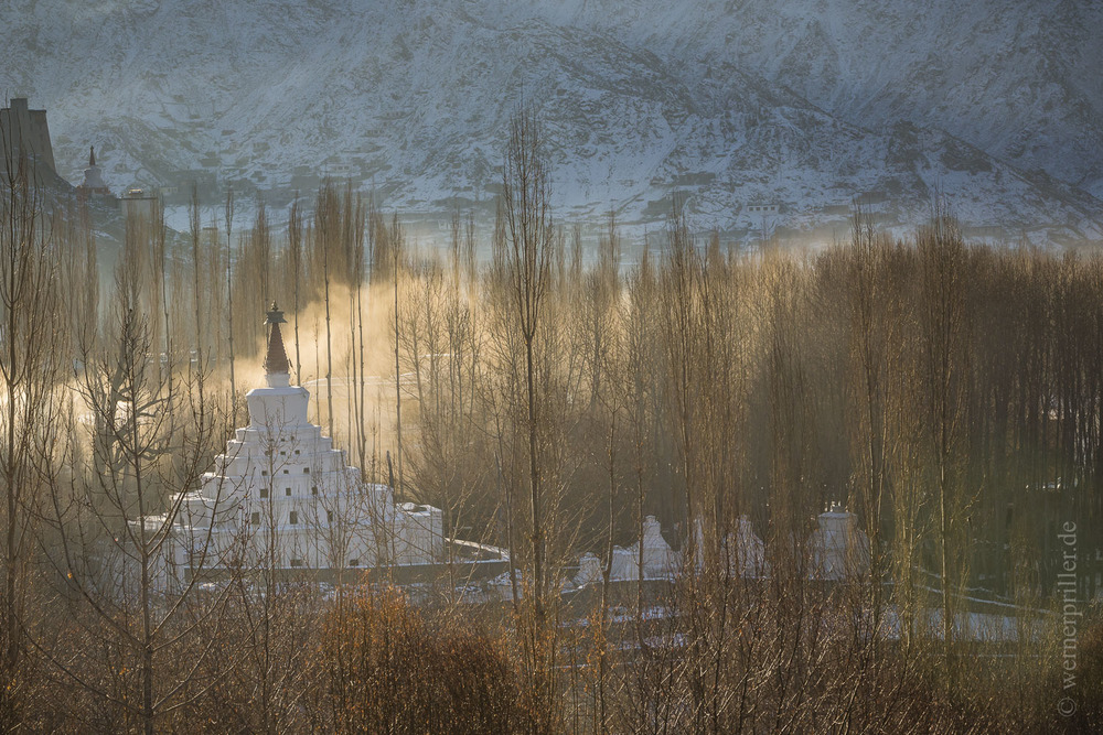 Ladakh-10.jpg