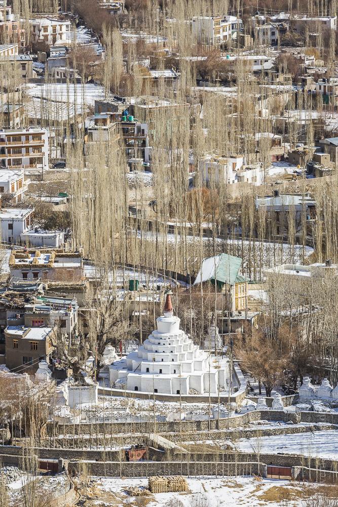 Ladakh-18.jpg