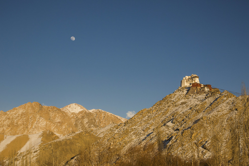 Ladakh-31.jpg