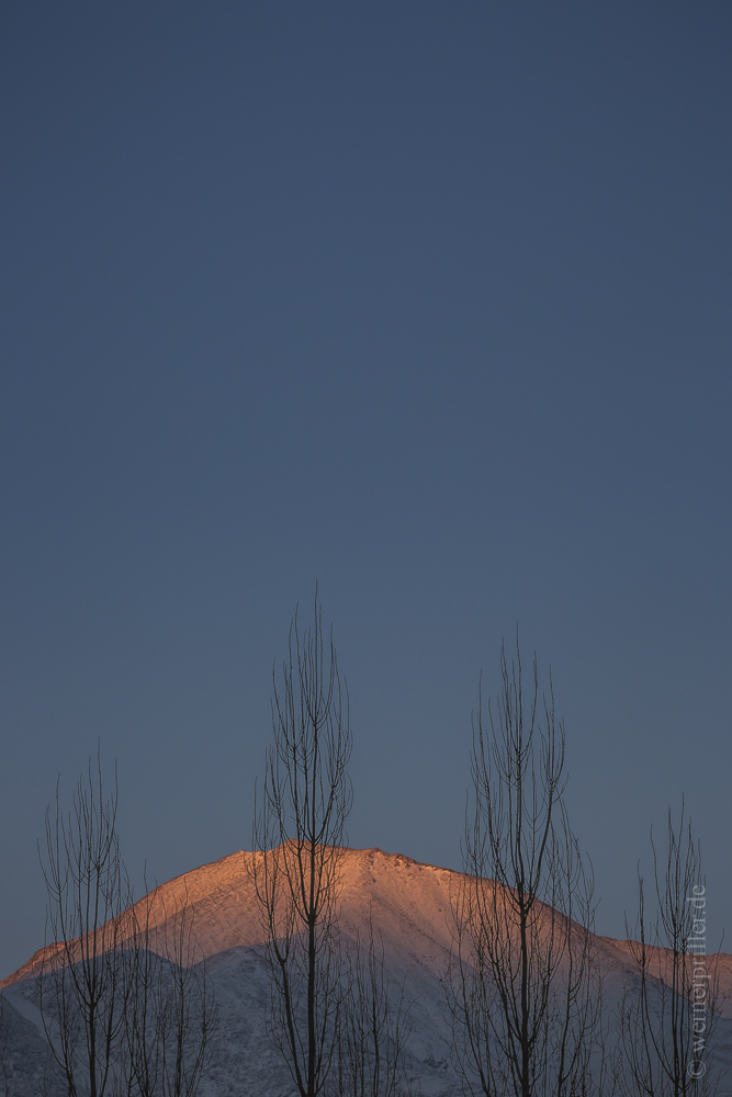 Ladakh-33.jpg