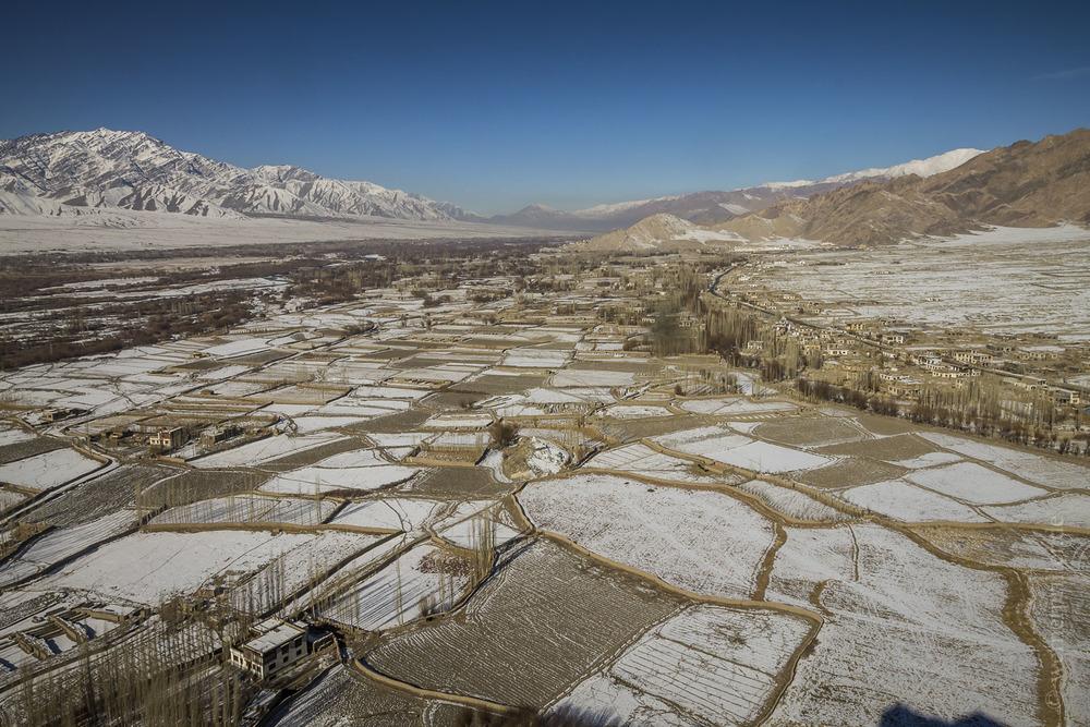 Ladakh-46.jpg