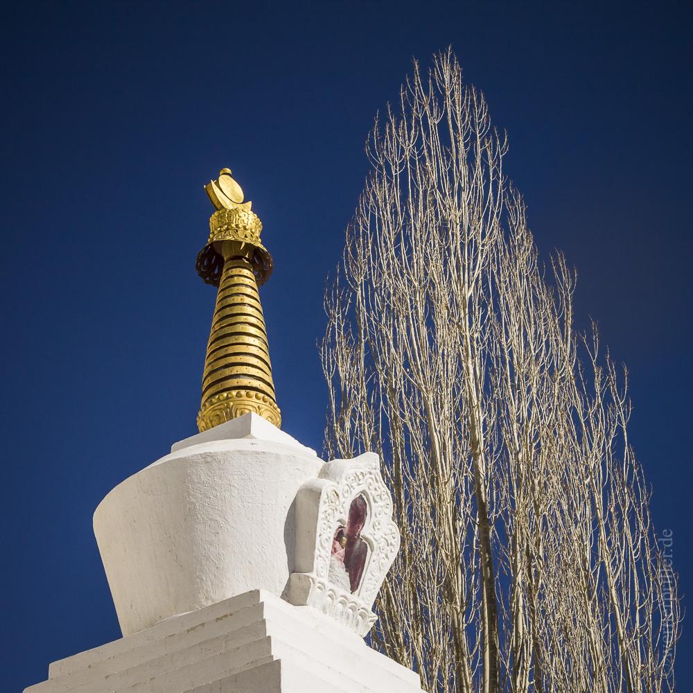 Ladakh-47.jpg