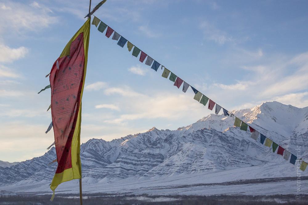 Ladakh-50.jpg