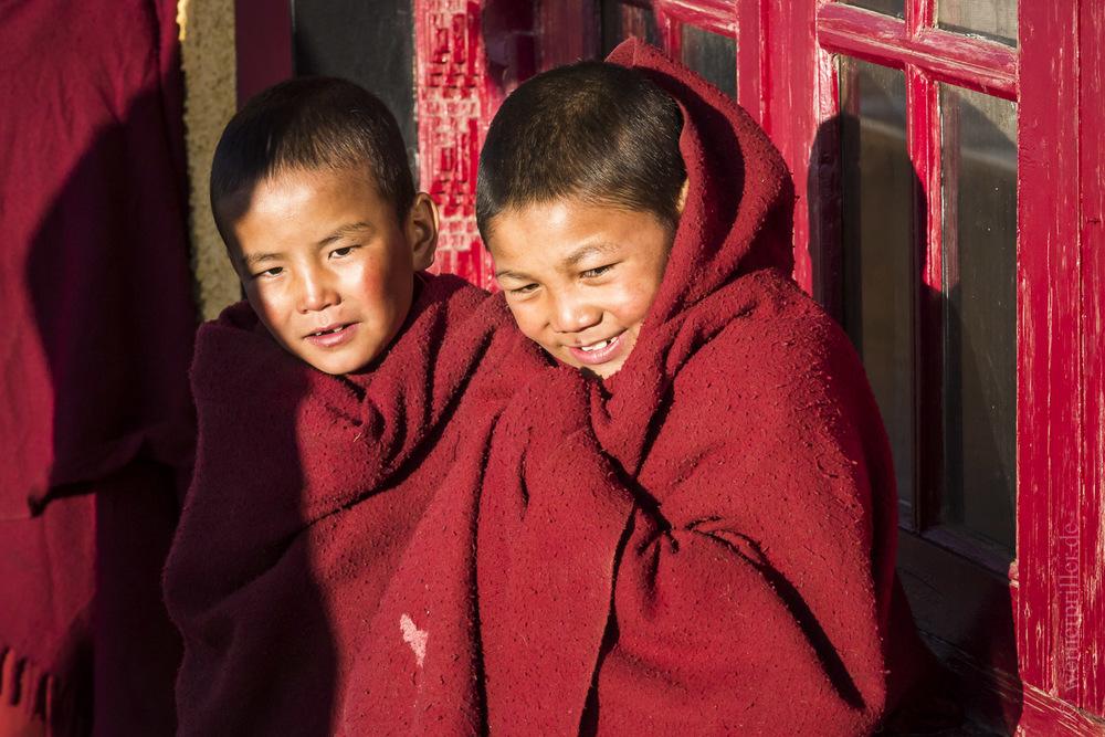 Ladakh-57.jpg