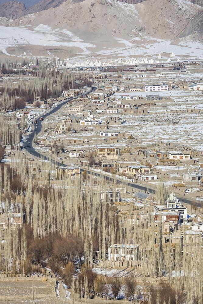 Ladakh-76.jpg