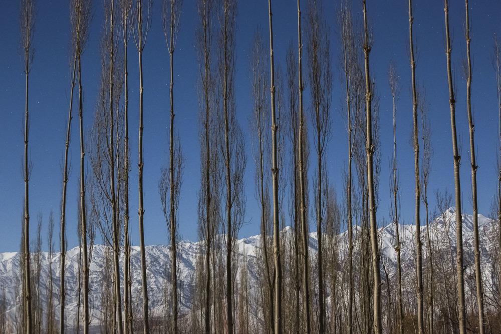 Ladakh-105.jpg