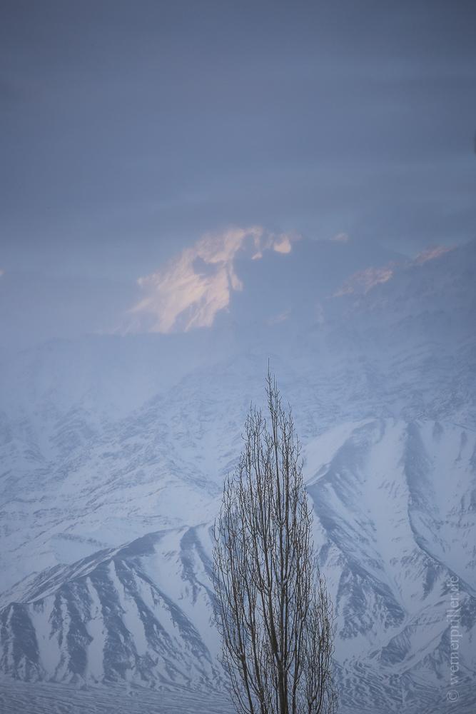 Ladakh-106.jpg