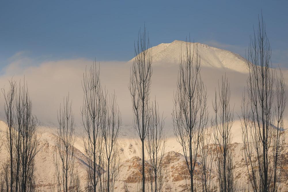 Ladakh-165.jpg