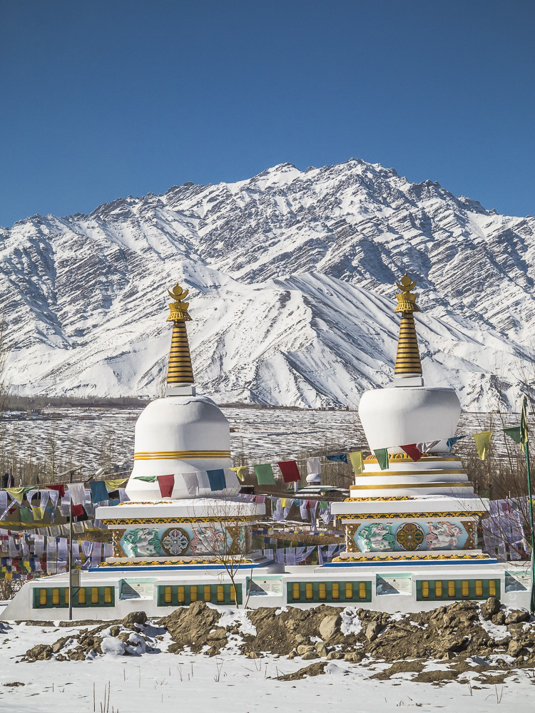 Ladakh-177.jpg