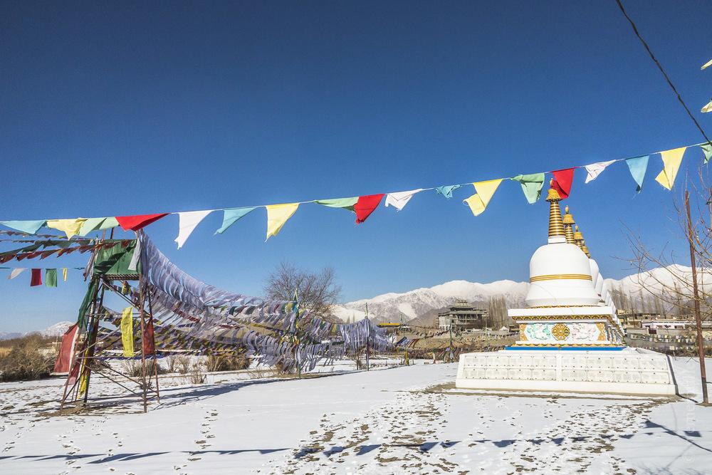 Ladakh-178.jpg