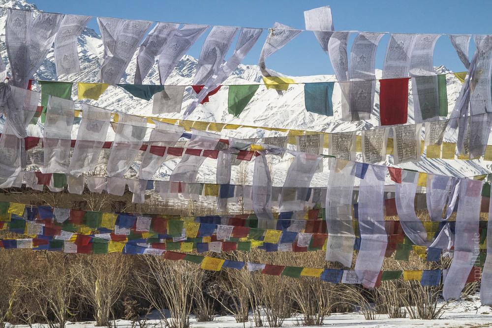 Ladakh-180.jpg