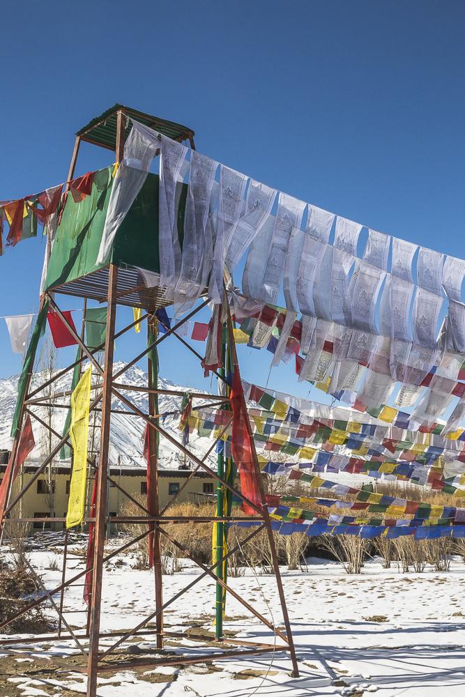 Ladakh-181.jpg