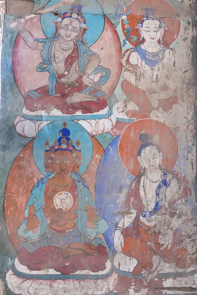 Ladakh-186.jpg