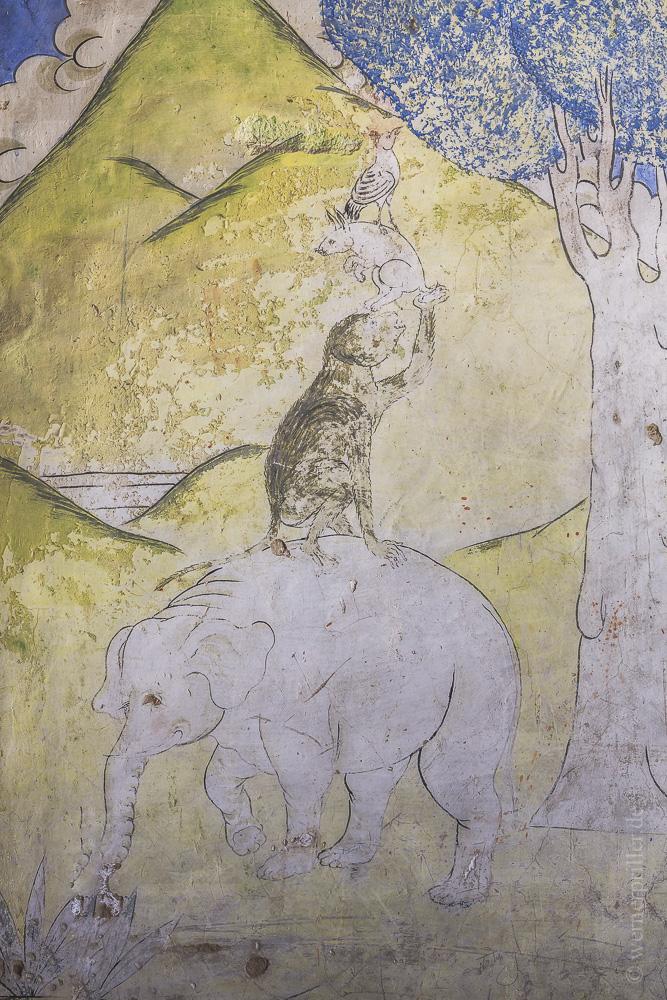 Ladakh-196.jpg