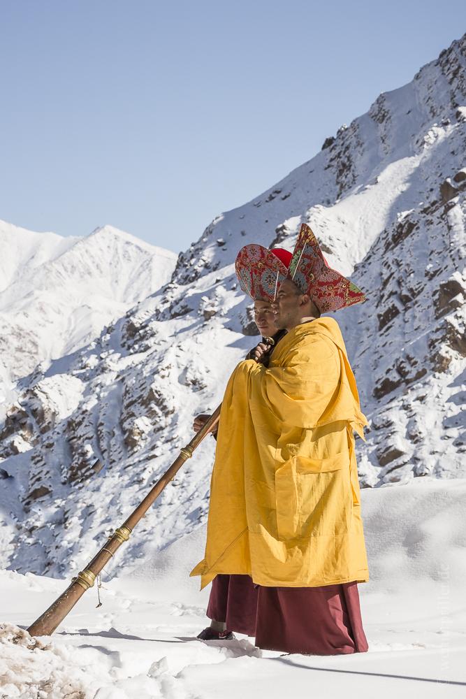 Ladakh-201.jpg