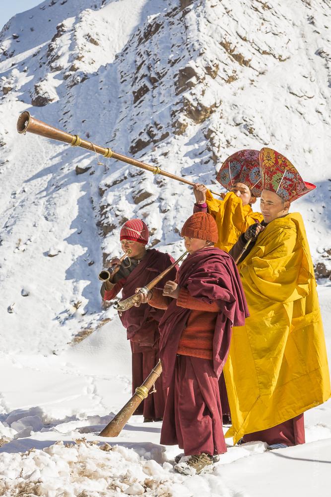 Ladakh-209.jpg