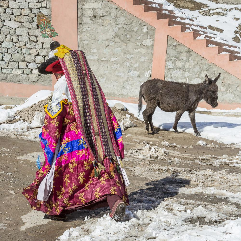Ladakh-213.jpg
