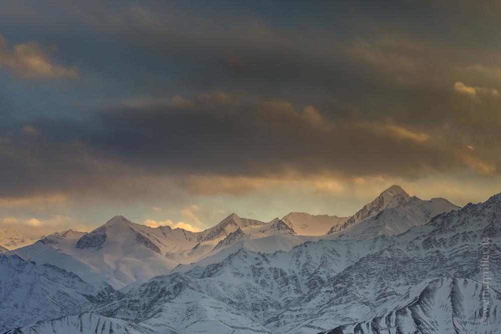 Ladakh-223.jpg