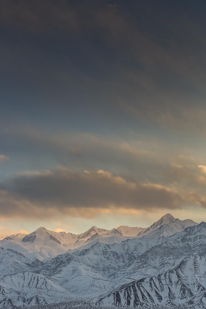 Ladakh-224.jpg