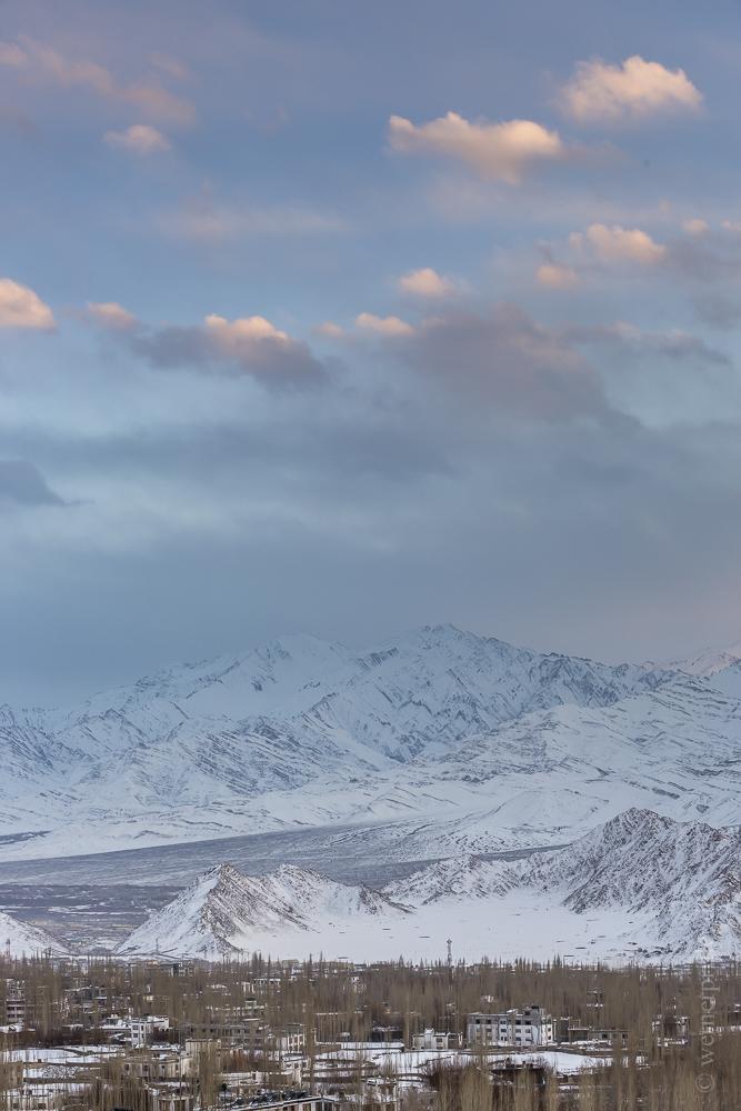 Ladakh-225.jpg