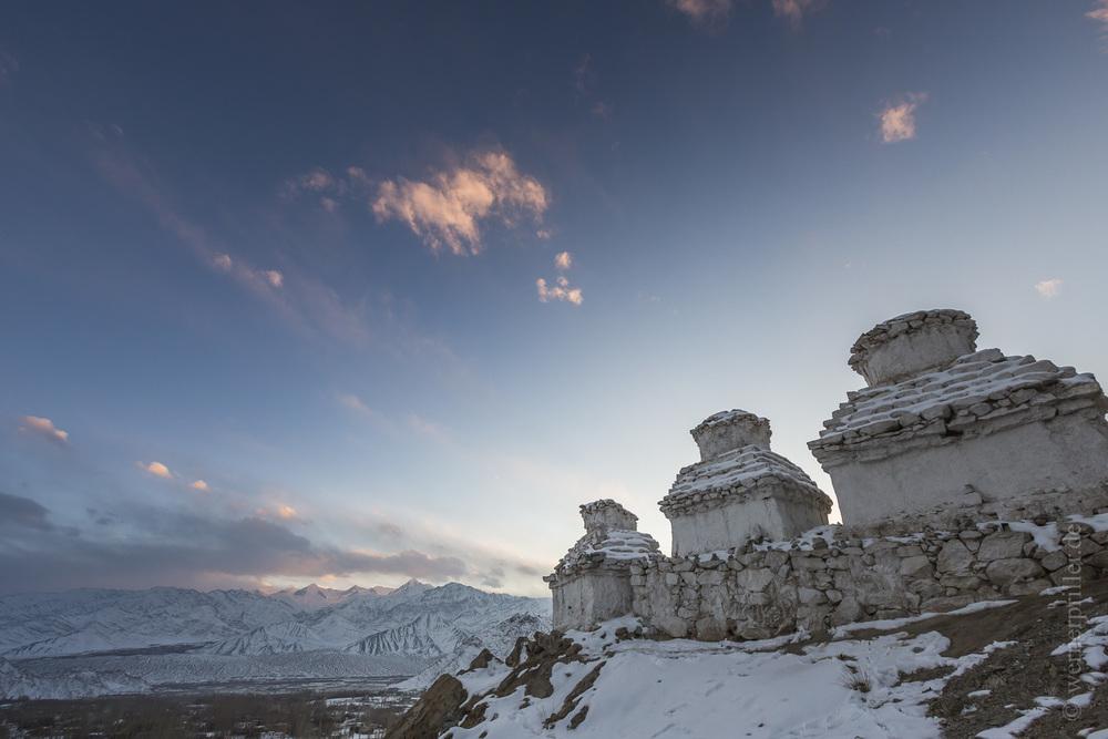 Ladakh-226.jpg