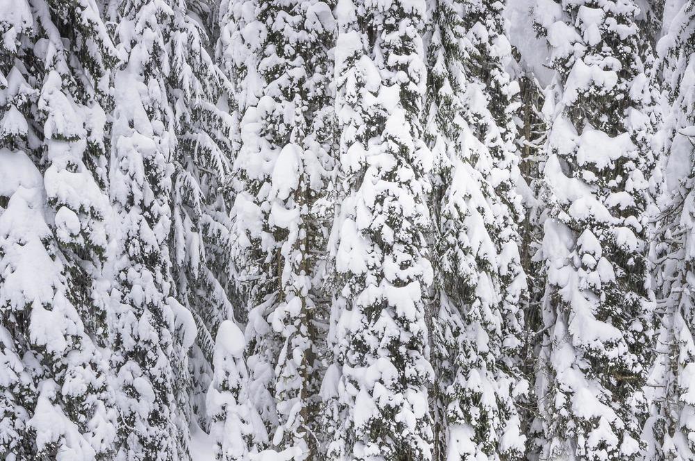 Kanada-127.jpg