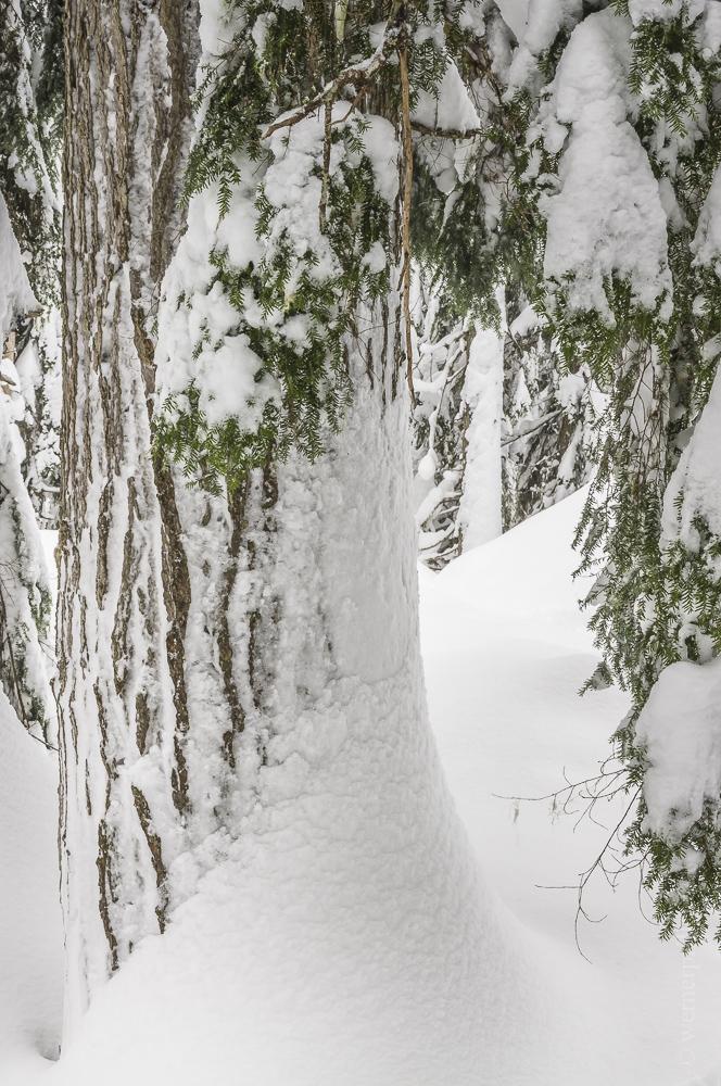 Kanada-128.jpg