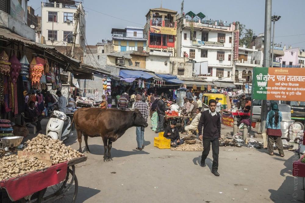 Neu-Delhi-57.jpg