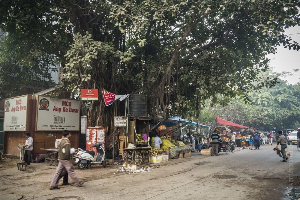 Neu-Delhi-86.jpg