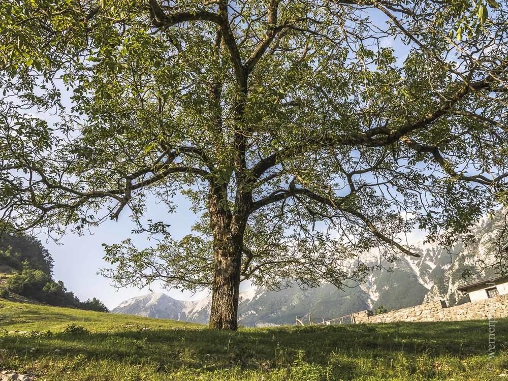 Slowenien-104.jpg