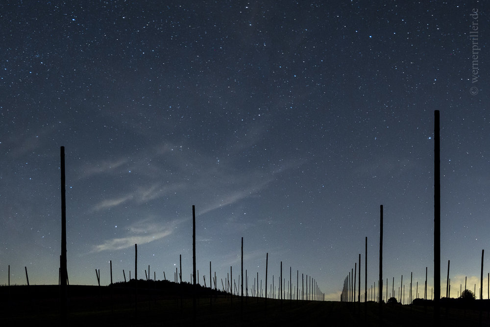 Hopfensäulen und Nachthimmel, Hallertau  Hop poles and nightsky, Hallertau, Germany